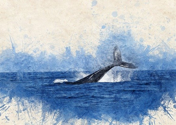 The Mystic World of Whales