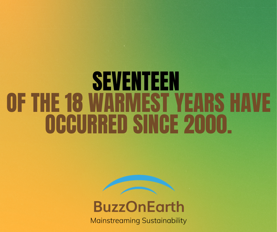 The Warmest Year Ever!