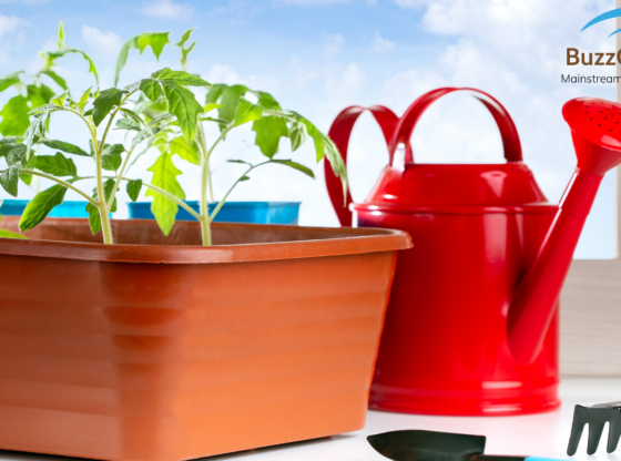 A Guide to Eco-Gardening: The Whats The Whys and The Hows