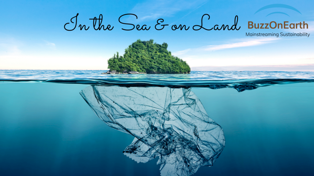 Importance of Plastic Recycling: Presence on the Land and the Sea
