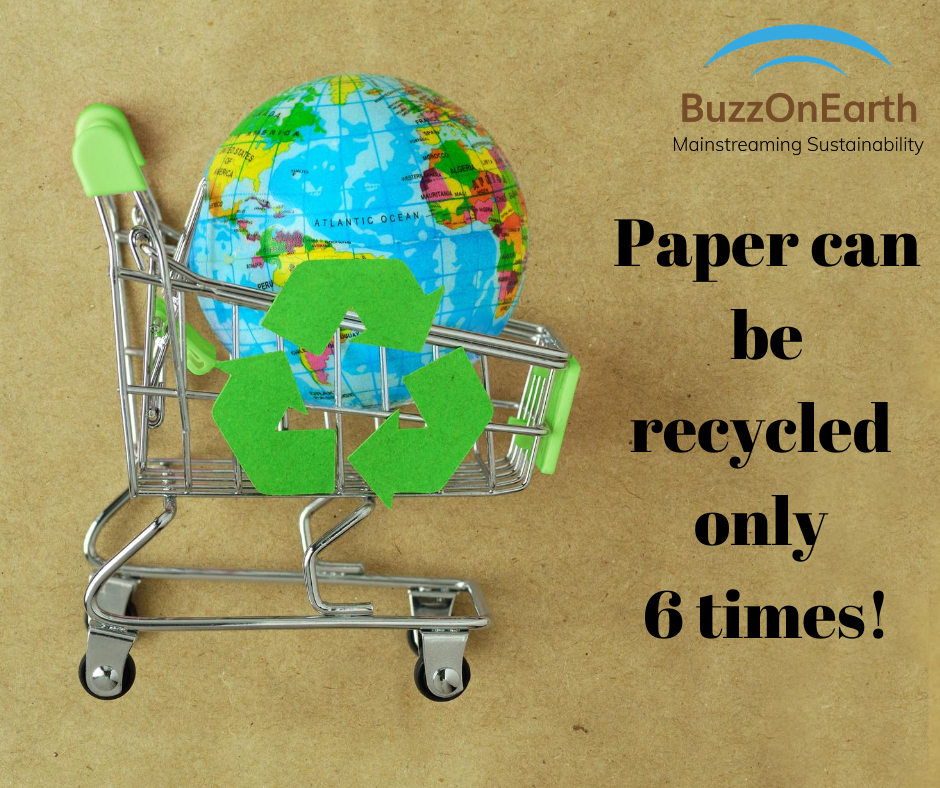 The Limit to Paper Recycling