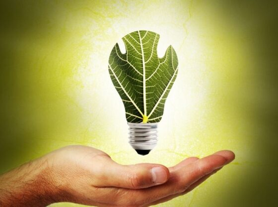 Top 9 Startups for renewable energy in India that you should know