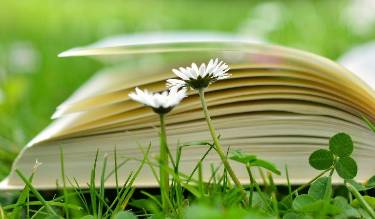 The 9 best books to read on Environmental Protection