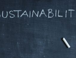 How do you define Sustainable Strategy