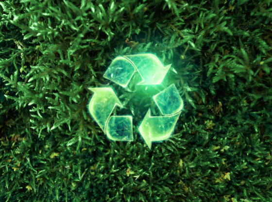 From Recycling to Bonds