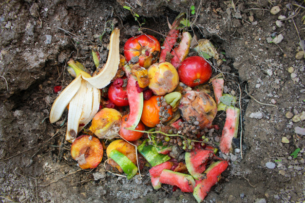 Benefits of composting at home