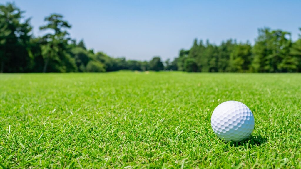 Golf and its Environmental Implications