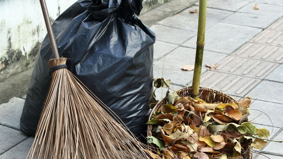 Household Waste Management: 8 Tips to Manage Better